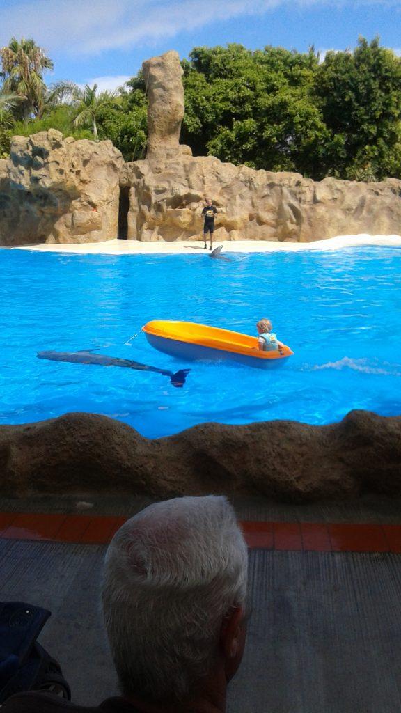 Loro park show delfini