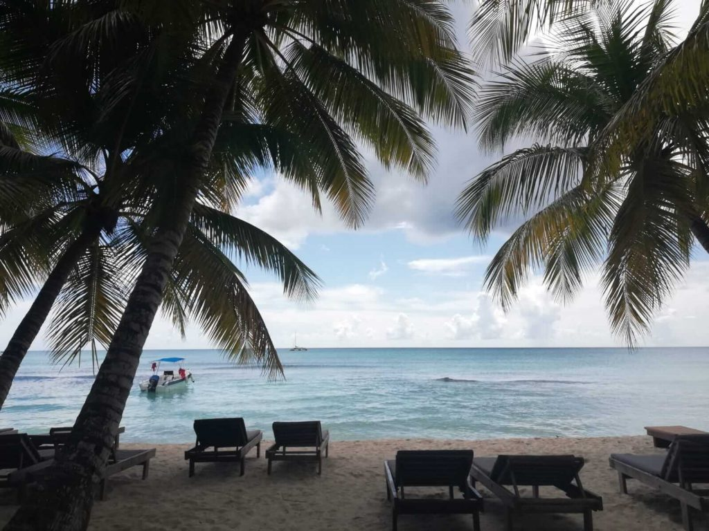 Insula Saona-plaja