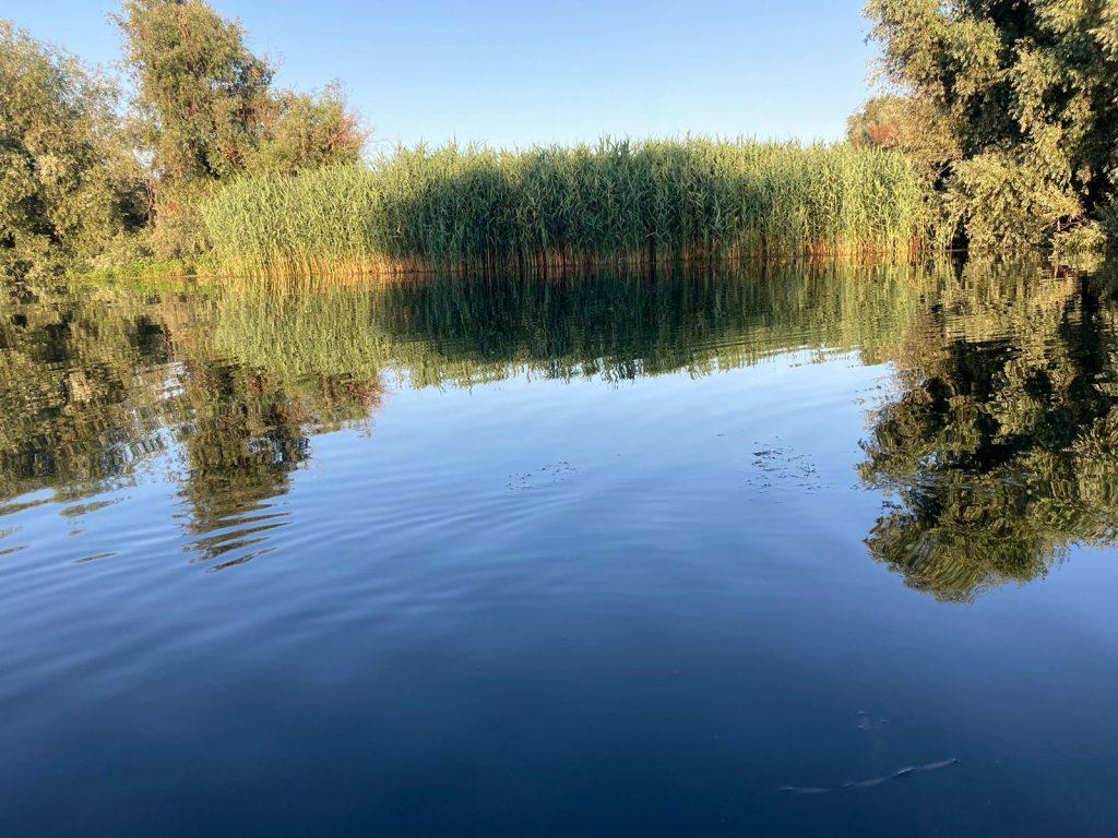 delta-dunarii-natura