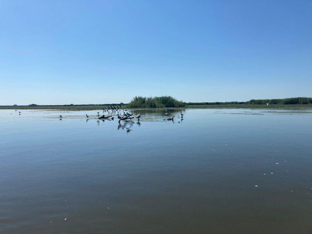 lac-delta-dunarii