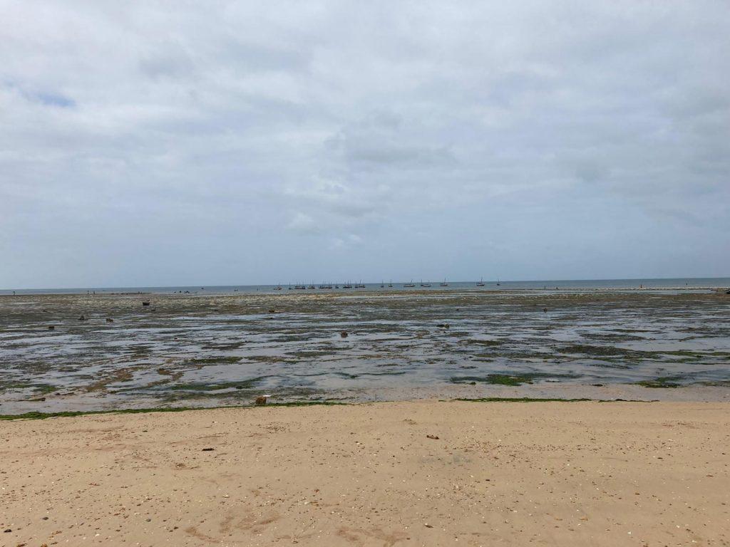 safari blue fumba beach