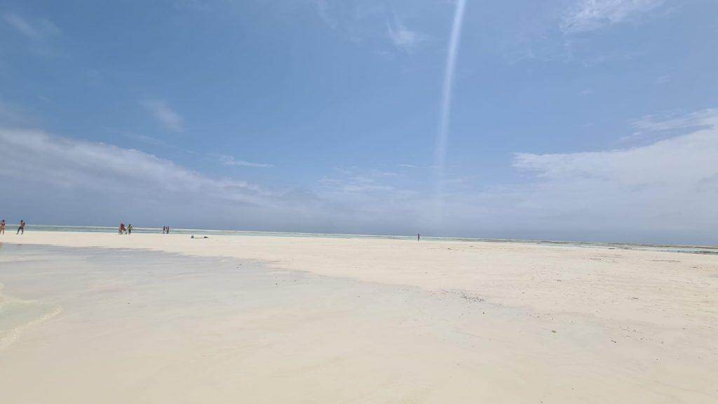 mnemba beach