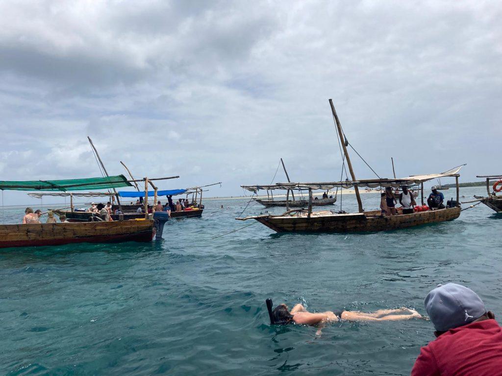 safari blue boats